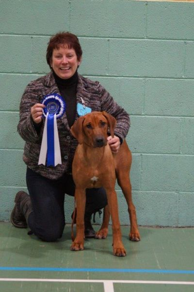 Florence winning Puppy Group 6 at her first Championship Show
